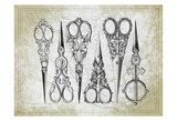 Vintage Scissors Art by Sheldon Lewis