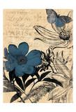 Paris Blue Prints by Jace Grey