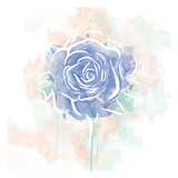 Floral Watercolor Rose Posters by  OnRei