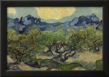 Vincent Van Gogh (Landscape with olive trees) Art Poster Print Prints