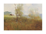 Tree in the Field Premium Giclee Print by Stefano