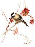 Chickadee 11 Affiches par Suren Nersisyan