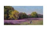 Plein Air Wild Lavender Premium Giclee Print by Jill Schultz McGannon