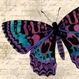 Jewel Dreams I Poster by Elizabeth Medley