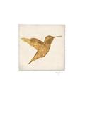 Luxe Hummingbird Reproduction giclée Premium par Morgan Yamada