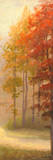 Fall Trees I Posters by Michael Marcon