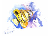 Angelfish Copperhead Prints by Suren Nersisyan