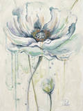 Fresh Poppies II Kunstdruck von Patricia Quintero-Pinto