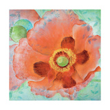 Sheer Poppy Love 1 Premium Giclee Print by Elle Summers
