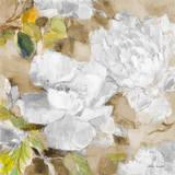 White Modern Peonies II Posters by Lanie Loreth