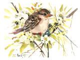 Baby Sparrow Posters par Suren Nersisyan