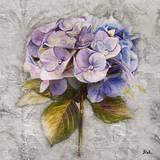 Lavender Flourish Square I Prints by Patricia Quintero-Pinto