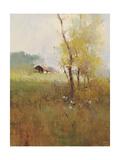 Serene Field Premium Giclee Print by Stefano