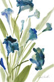 Teal Belles II Prints by Lanie Loreth