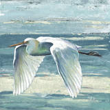 Great Egret II Prints by Patricia Quintero-Pinto