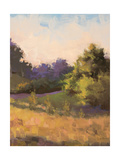 Plein Air Landscape Premium Giclee Print by Jill Schultz McGannon