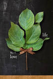 Leaves I Poster by Alison Jerry