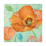 Sheer Poppy Love 2 Premium Giclee Print by Elle Summers