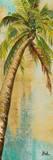 Beach Palm Panel II Poster von Patricia Quintero-Pinto