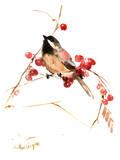 Chickadee 13 Print by Suren Nersisyan
