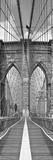 Brooklyn Bridge Panel Plakater af Shelley Lake