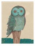 Owl In Blue Monotone Posters van Paula Mills