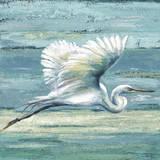 Great Egret I Kunst von Patricia Quintero-Pinto