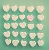 Marshmallow Love Prints by Gail Peck