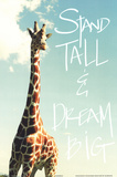 Stand Tall Plakater af Susan Bryant