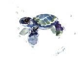 Baby Sea Turtle Kunstdrucke von Suren Nersisyan