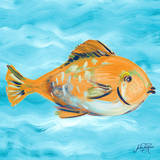 Fish Underwater II Print by Julie DeRice