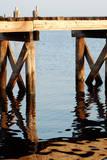 Waterside Beauty I Prints by Gail Peck