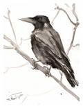 Raven Prints by Suren Nersisyan
