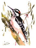 Woodpecker On Tree Posters by Suren Nersisyan