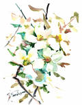 Dogwood Flowers 2 Print by Suren Nersisyan
