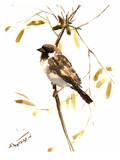 Sparrow 5 Poster par Suren Nersisyan