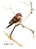 Sparrow 7 Posters par Suren Nersisyan