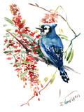 Blue Jay 9 Art par Suren Nersisyan