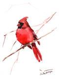 Rouge cardinal Affiches par Suren Nersisyan