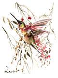 Hummingbird 12 Posters by Suren Nersisyan