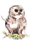 Owl 6 Print by Suren Nersisyan