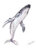 Humpback Whale Prints by Suren Nersisyan