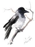 Hooded Crow Art par Suren Nersisyan