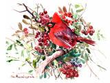 Red Cardinal 6 Posters par Suren Nersisyan
