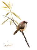 Sparrow 2 Affiches par Suren Nersisyan