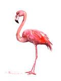 Pink Flamingo Posters by Suren Nersisyan
