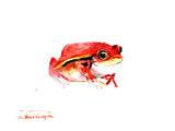 Tomato Frog Prints by Suren Nersisyan
