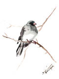 Dark_Eyed_Junco Reproduction procédé giclée par Suren Nersisyan