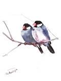 Java Sparrows Posters par Suren Nersisyan