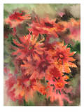 Blanket Flowers 3 Poster by Suren Nersisyan